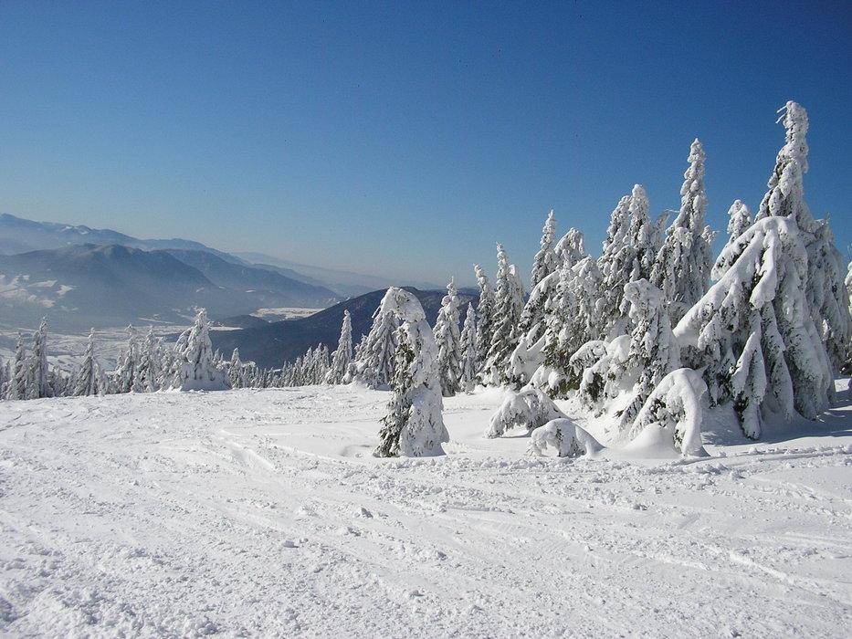 Ski Park Kubínska ho?a - ©me | HappyNewYear @ Skiinfo Lounge