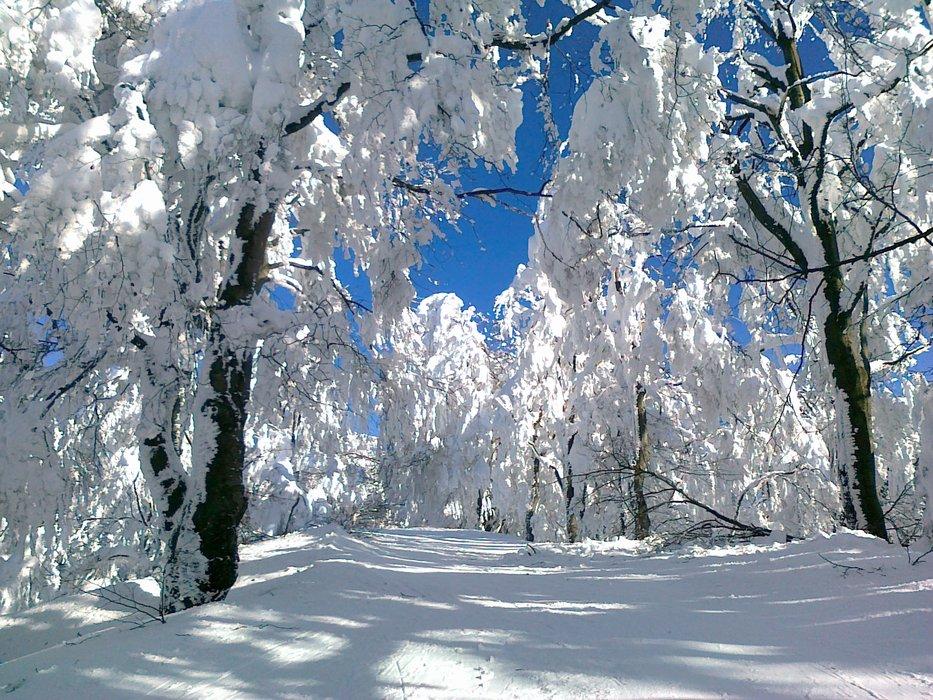 Velka Raca - ©ja :) | snowmatoboard @ Skiinfo Lounge