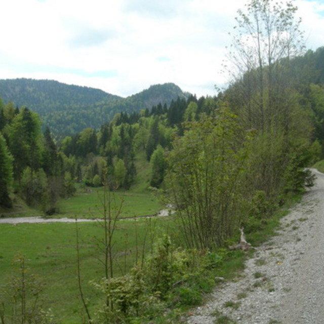 Galgenwurfsattel - Schronbachtal #20