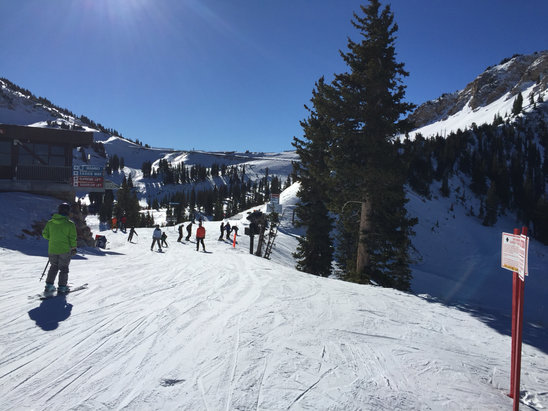 Alta Ski Area - 3 lifts open. Enough terrain to keep you busy - ©andrew.klein's iPhone