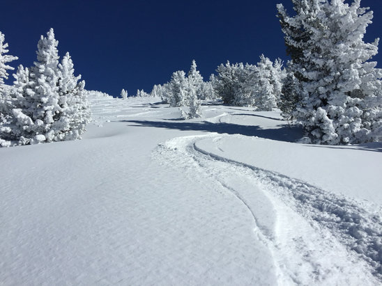 Mammoth Mountain Ski Area - Epic powpow last Thursday. And no, I'll never tell where I took this photo - ©jmac