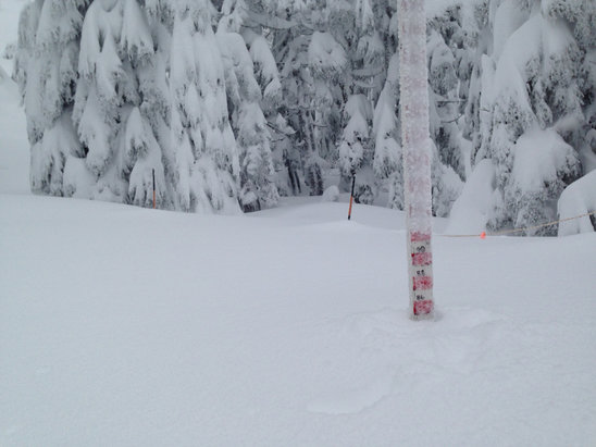Mount Ashland - Opening day Dec 14 2015!  - ©PC's iPhone