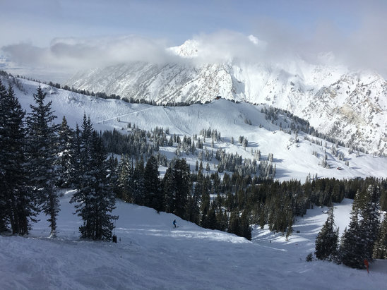 Alta Ski Area - Great day skiing at Alta in 14 inches of the Best Snow on Earth! - ©Justin's iPhone