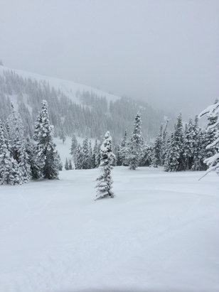 Grand Targhee Resort - Firsthand Ski Report - ©Michael's iPhone
