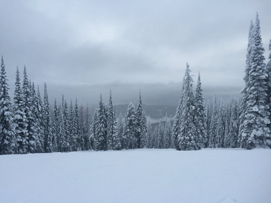 Whitefish Mountain Resort - Po Po, sweet day at the MT - ©iPhone