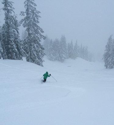 Mt. Bachelor - Omg today was even better, colder, calmer, 16