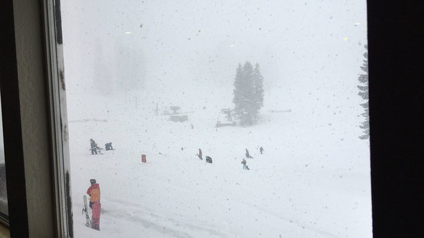 Bear Valley - It's dumping here. Powder for days.  - ©Charlie's iPhone