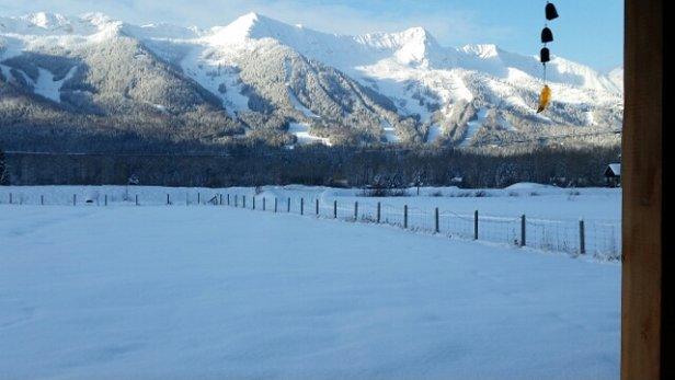 Fernie Alpine - Amazing snow. Can ski everywhere! - ©andrewdavidcohen56