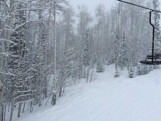 Sunlight Mountain Resort - Snow all day!!  - ©Zack