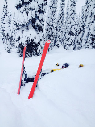 Fernie Alpine - The bowls were awesome! - ©ARNOLD's iPhone