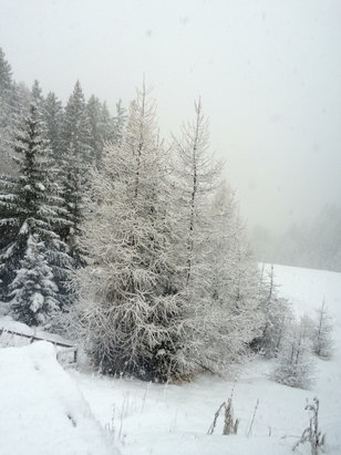 Nauders - Snowed all day, good powder by 3pm  - ©Joanna Austin's iPhone