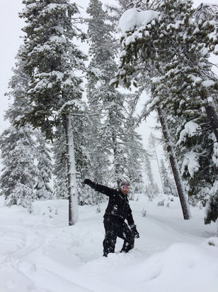 Lookout Pass Ski Area - Yesterday was a blast! We arrived and at least 10 inches had fallen. It snowed all day an was still snowing left. The coverage is fantastic this year! Highly recommend hitting the slopes peeps!  - ©Amy