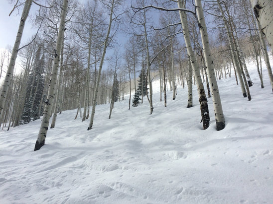 Park City - It was amazing out there yesterday.  - ©knee deep