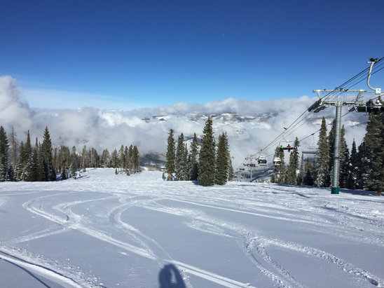 Beaver Creek - Skied yesterday and today. Snowed about 6 inches this afternoon. Conditions are excellent.   - ©anonymous user