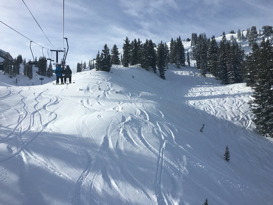 Alta Ski Area - Nuff said  - ©Summer