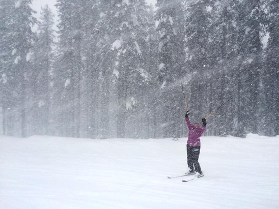 Lookout Pass Ski Area - Tons of snow flying!  Great day on 6
