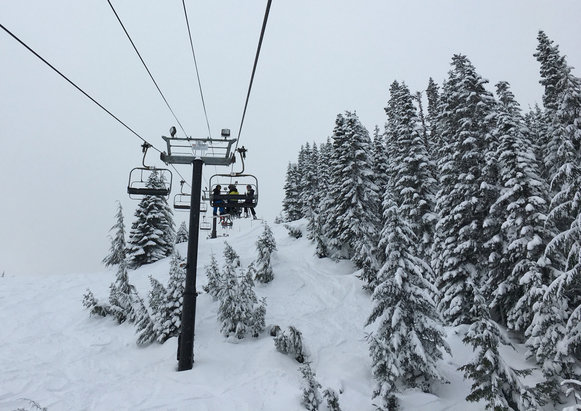 The Summit at Snoqualmie - Powder day! A full foot of fresh snow to start the day and it kept snowing most of the day. Easy drive with clear highways and easy parking.  - ©Yellobird