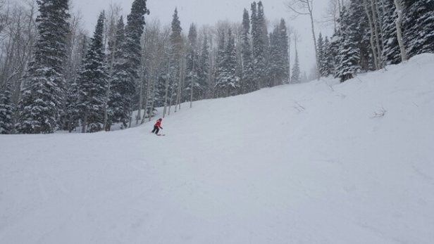 Park City - The snow was great, definitely got pushed into some big piles in some areas, but still amazing powder, soft as a pillow! Many good trails to be had! - ©drjahnke