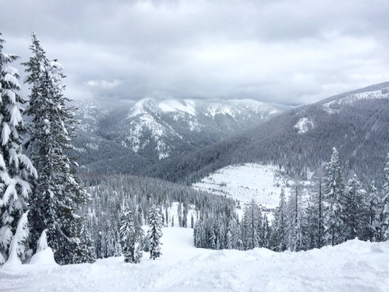 Lookout Pass Ski Area - Powder! Great coverage with over a foot of light, fresh snow. - ©Ryan