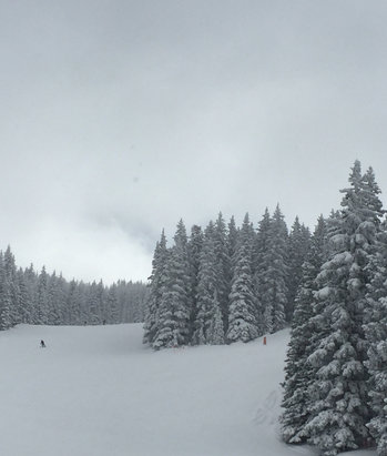 Ski Santa Fe - Great skiing yesterday. Coming out again today! - ©Mauny  Muray's iPhone