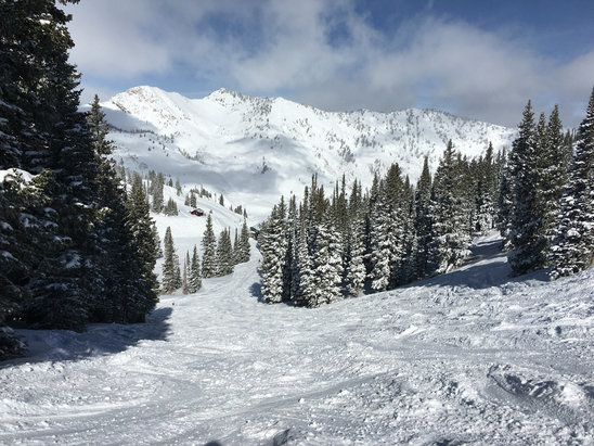 Alta Ski Area - Alta never disappoints but some days are EPIC!  13