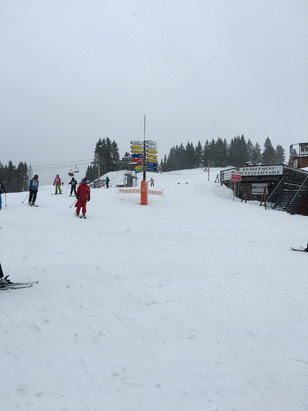 Les Carroz - Snowing heavily higher up but very wet, forecast promising . - ©Chris's iPhone 6s