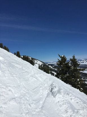 Jackson Hole - February 7 was spring conditions, clear but warm.  It was like we were skiing through crusty asphalt on some of the mogul fields.   Still tons of snow but a new dump would be ideal.  And still better than being at work for a day.  - ©Georges I phone