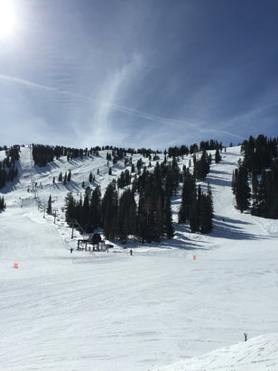 Solitude Mountain Resort - Nice sunny day today! About 50-55 degrees. Could have easily ski'd in a t-shirt. No wind. No lift lines. Snow was machine groomed hard pack. No powder left and a little slick in some spots. Even so, it was a beautiful day on the mountain!   - ©iPhone (2)