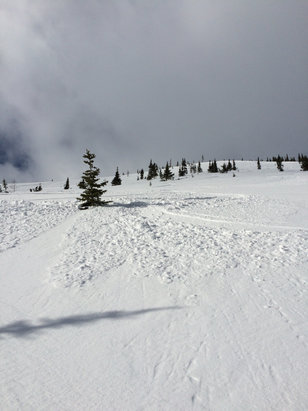 Castle Mountain - Super fun day at Castle. New snow plus the wind was doing its magic. - ©Jake's phone