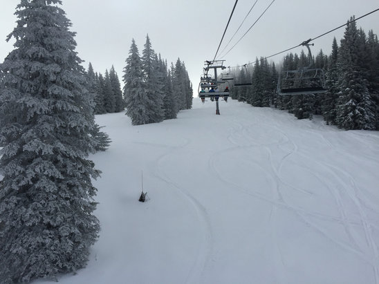 Vail - Fresh powder, blue skies, awesome day at Vail. Short lift lines equals epic day!!!  - ©Shannon's iPhone