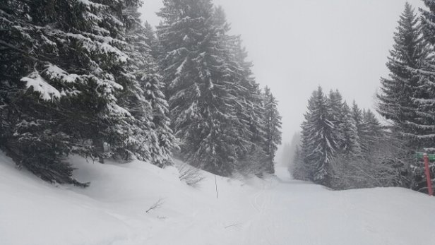 Valmorel - Good snow. Bad visibility  - ©rmikati99