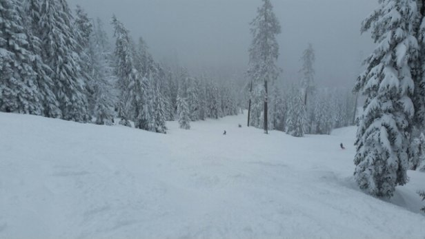 Mount Ashland - excellent Friday at Mt Ashland. - ©digiustoconsulting