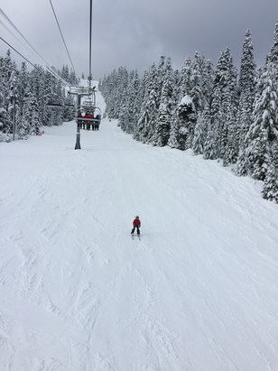 The Summit at Snoqualmie - Cool morning sunshine and up to 7 inches of snow off-piste, but turned to mashed potatoes by mid-day. Good times! - ©Scotty May Jay