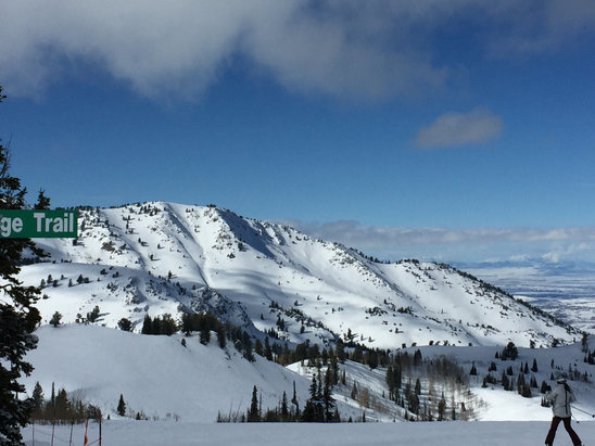 Powder Mountain - Low vis is the AM then cleared up in the early afternoon. Fresh lines all day! This place rocks! Wish the list were faster to get more runs in. The place is huge!! Way better than park city. - ©Michael's iPhone