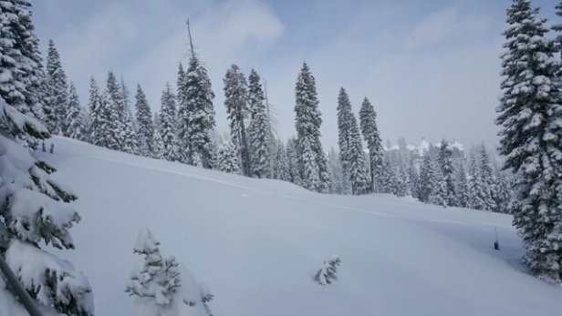 Northstar California - Deep pow has now settled and better to ski on without stalling out. Fresh tracks in trees on front side still available.  Overall great conditions.  - ©yhvistendahl
