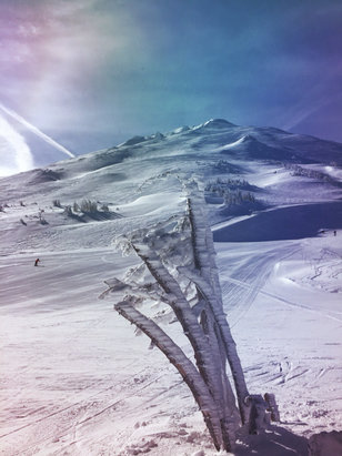 Mt. Bachelor - Firsthand Ski Report - ©Wes