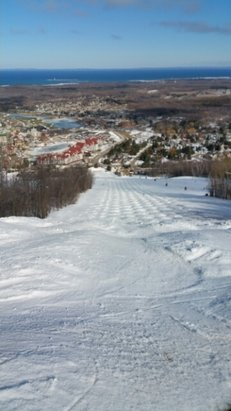 Blue Mountain - Beautiful sunny spring skiing. Rhinus run filled with perfect moguls.  - ©rlevit