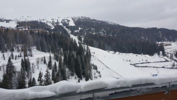 Nassfeld Hermagor - Firsthand Ski Report - ©gogokol