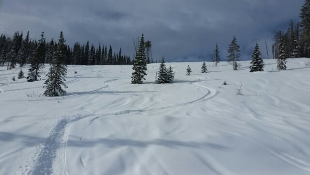 Kimberley - Firsthand Ski Report - ©Scooterp49