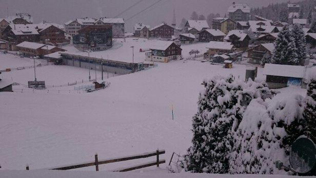 Grindelwald - Wengen - Waking up with fresh snow in Wengen - ©Ferran