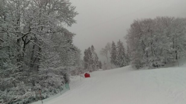Vaujany - Has been snowing for 24 hours and still going. Windy and low visibility today, but great fresh snow.  - ©mattlamprell