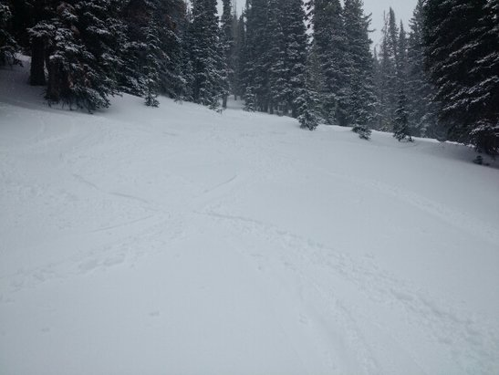 Alta Ski Area - Fresh snow on mountain today and still snowing! Great conditions...Alta is getting the snow! - ©eric