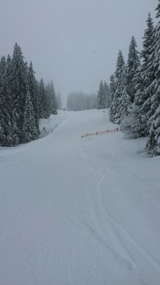Feldberg Wintersportzentrum - fast  - ©aegir3058
