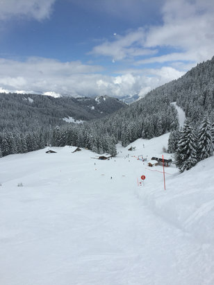 Morzine - Powder Day! - ©Phil's iPhone
