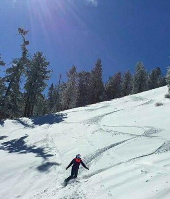 Bear Mountain - Bear is always fun to ride powder! still needs more, for some legit tree skiing. - ©pmeineke89