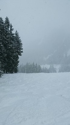 Stevens Pass Resort - On Wednesday it was snowing when I arrived it was snow hard when I left. Some good powder in places. Great day. - ©theimportingguru