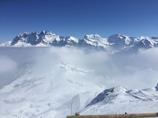 Avoriaz - Bluebird day in Avoriaz - perfect snow, perfect weather.   - ©Martin Wadley's iPhone