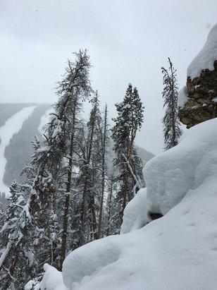 Keystone - Yesterday was deep in the trees!!! Today must be insane o.O!  - ©Scottit