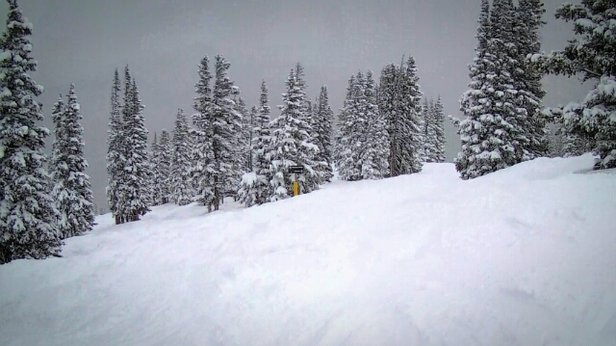 Winter Park Resort - Powder day at the MJ - ©kvernonpt