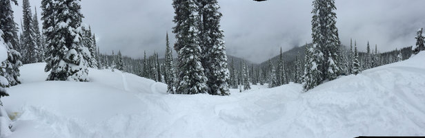 Revelstoke Mountain Resort - I've been boarding here for the past week. The situation is this - the top third of mountain has AMAZING snow. Consistent, dry snowfall has made for excellent glades. The middle of the mountain is wet snow but cold enough to make it total crap to ride - really sketchy heavy snow. And the bottom third has no snow  - ©Trevor's iPhone